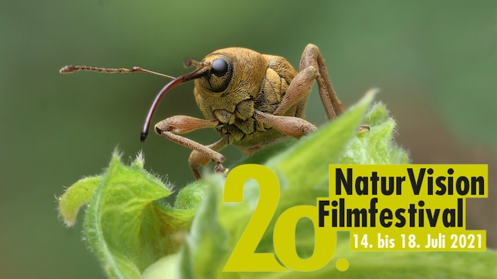 NaturVision Film Festival – Audi Environmental Foundation sponsors short film award