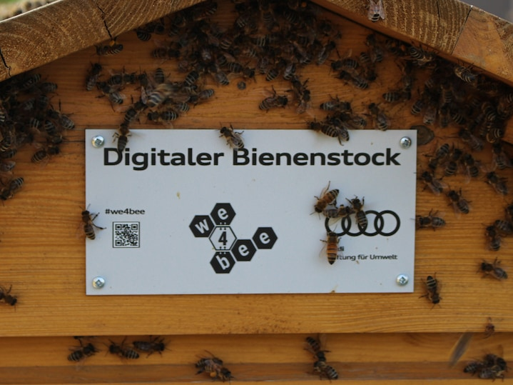 Data science with bee data – first scientific results from research within the bee hive